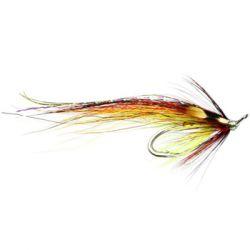 Cassley Shrimp