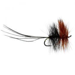 Caledonia Flies - Kate Maclaren