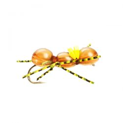Chernobyl Ant Brown