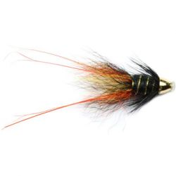Willie Gunn Francis Mini Conehead