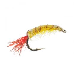 Flash Shrimp Yellow