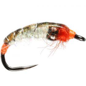 Orange Pearl Tungsten Shrimp