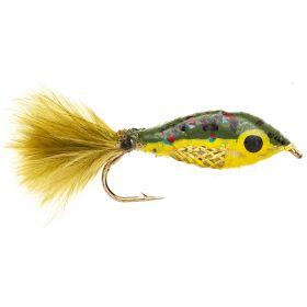 Janssen's Minnow - Brook Trout